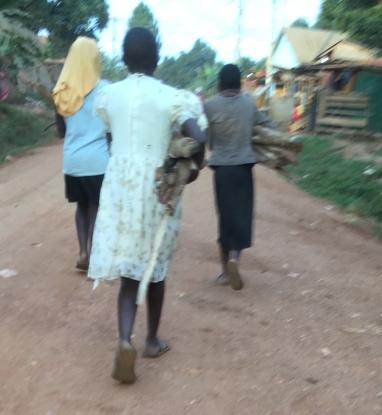 Entebbe firewood